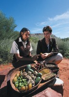 Learning about bush foods