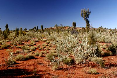 Australian Outback Experience - Timelessness