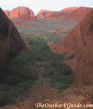 View from Olgas lookout Karingana