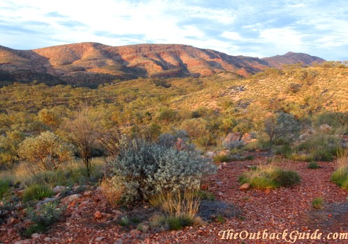 Near Alice Springs