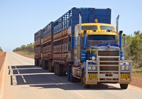 A road train hauling cattle