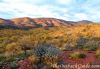 View of West MacDonnell Ranges