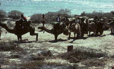 Australia in 1988