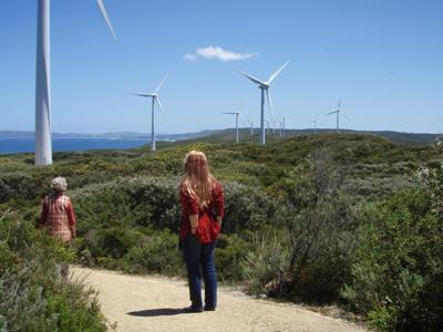 Windmills at Albany