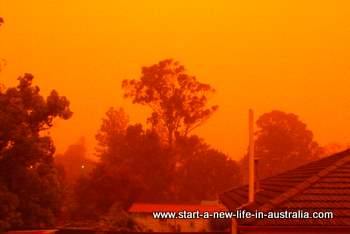 suburban Sydney skyline enveloped in red dust