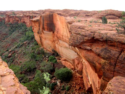 Standing on the rim of Kings Canyon