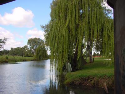 Condamine River Warwick